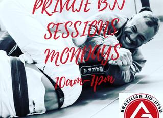 Private Bjj training!