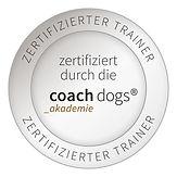 cd_zertifiziert_rund_trainer.jpg