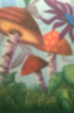 bottom SR mushrooms_edited.jpg