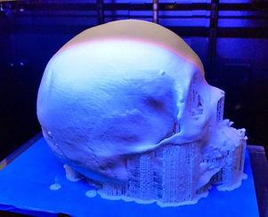 3-Dimensional Model Maker Skull