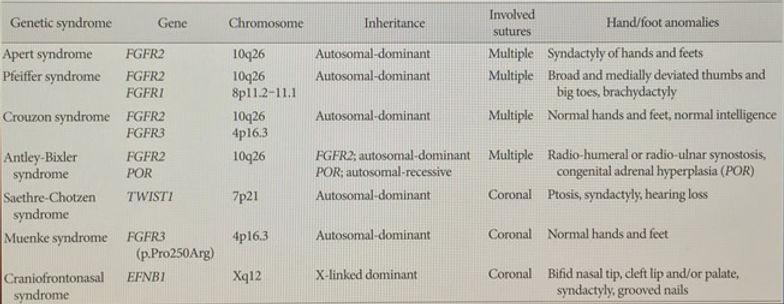 Genetics Apert, Pfeiffer,Crouzon, Antley-Bixler, Saethre-Chotzen, Muenke, Craniofrontonasal Syndromes