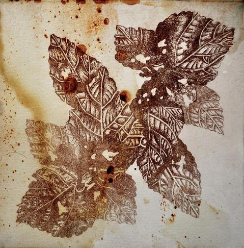 Rusted Leaves1.jpg