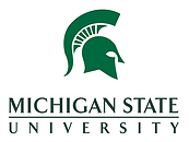 michigan-state-university-w800h600.png