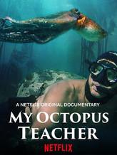 my octopus teacher.jpg