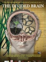 the divided brain.jpg