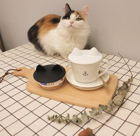 JoyCat Silicone Canfood/Cup Cover