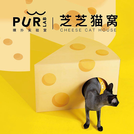 Purlab Cheese Cat House&Scratching Board
