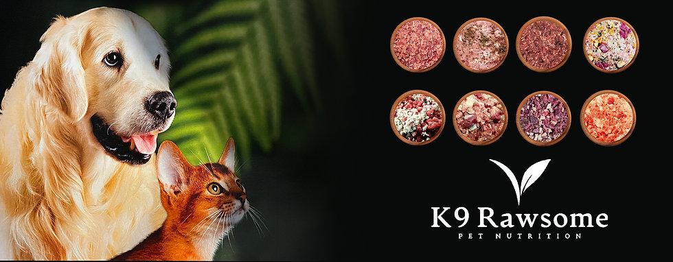 website cover - K9r.jpg