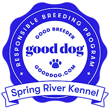 Good Dog Breeder Badge.png