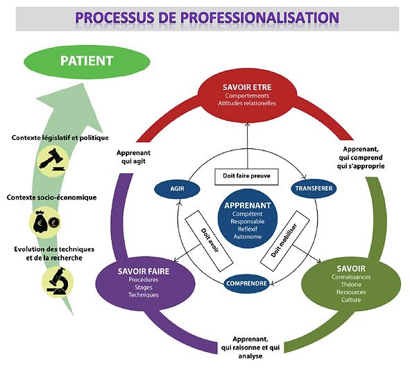 Processus professionalisation.png