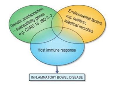 inflammatory bowel disease graph.jpg