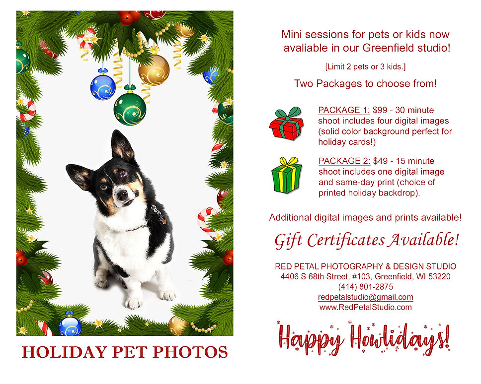 Holiday Pet Photos.jpg