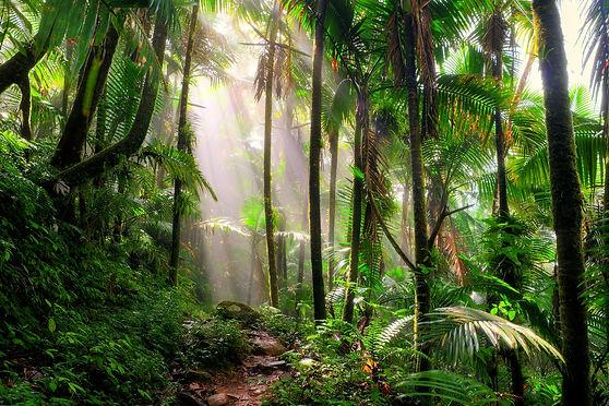 trekking bonito.jpg