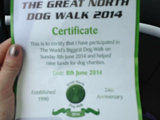 The Great North Dog Walk - Record Breaking Year!