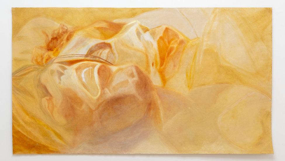 Vered Shilony / ורד שילוני