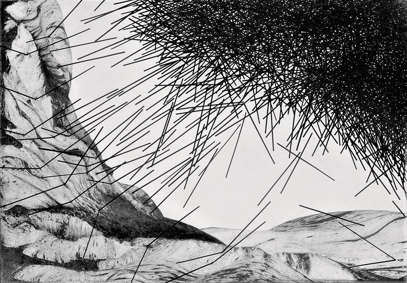 Zeev Gross / זאב גרוס