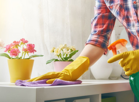 DIY Toxic Free Cleaning at Home