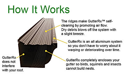 Gutter Guard / Protection