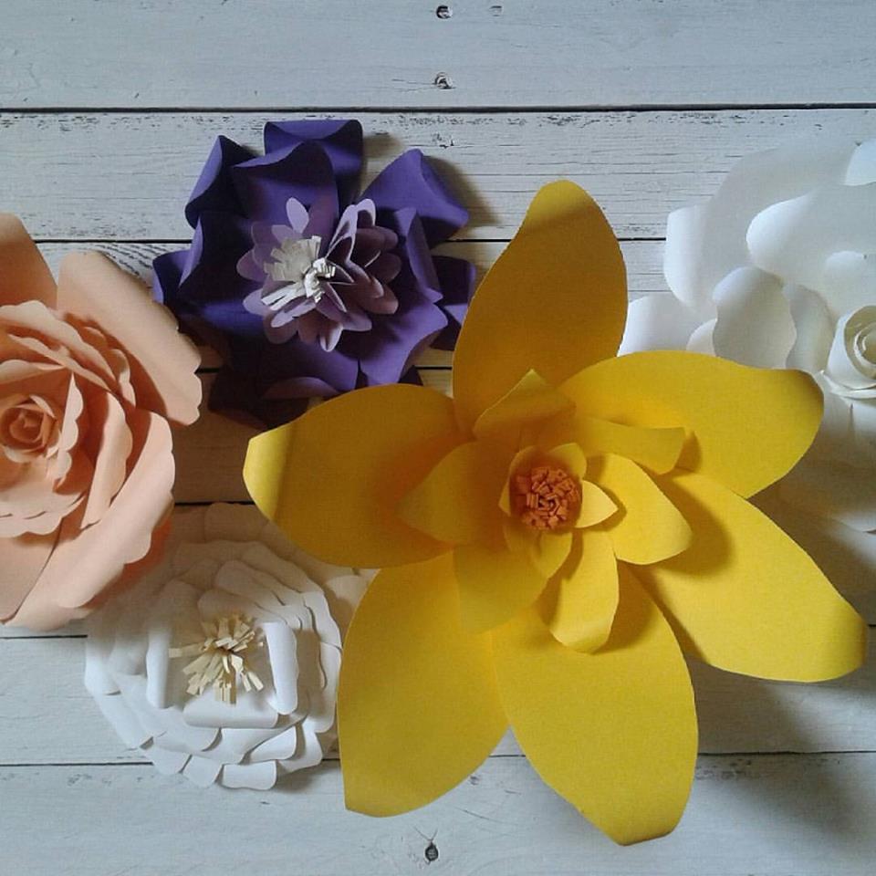 fiori carta sfondo fotografico
