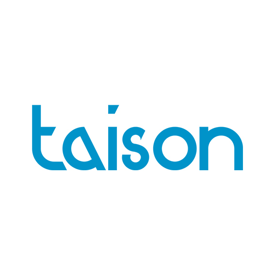 Taison Toys