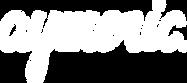 Aymeric Logo_white.png