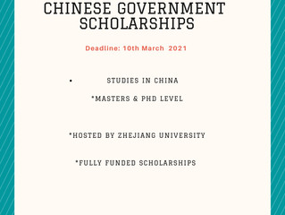 Chinese Government Scholarships | Scholarships for international students