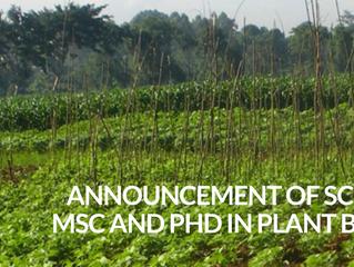 University of Makerere MSc and PhD Scholarships in Plant Breeding, Uganda