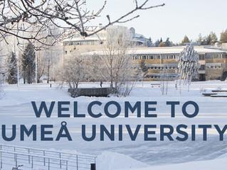 Postdoctoral Position in Biochemistry at Umeå University in Sweden