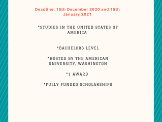 American University Emerging Global Leader Scholarship I Scholarships for International Students