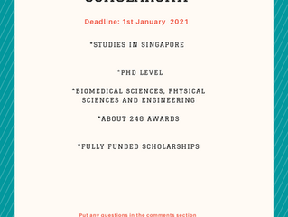 Singapore International Graduate Scholarship I Scholarships for International Students