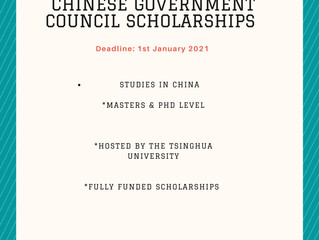 Chinese Government Council Scholarships | Scholarships for international students