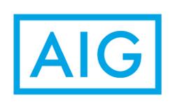 AIG CyberEdge - Cyber Decider