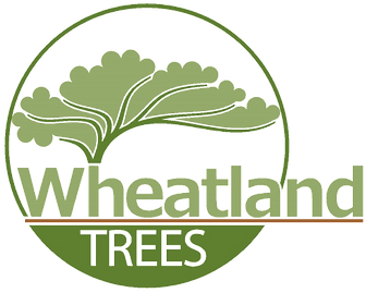 Wheatland_Trees_Logo_Only no background.