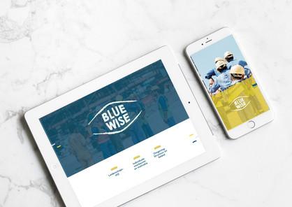 Bluewise.jpg