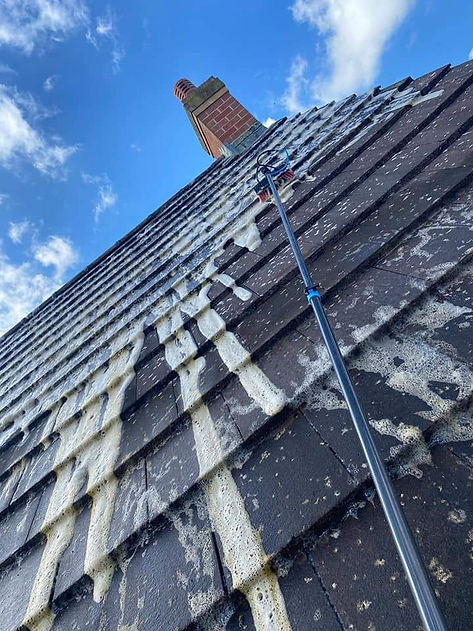 A roof being cleaned.JPG