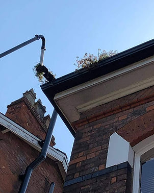 A gutter being cleared of leaves and deb