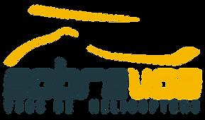 Logotipo_SobreVoa_SemFundo.png