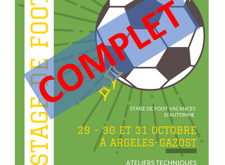 Stage de Foot FCPVG
