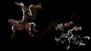 Fourmis.bio-vente et elevage de fourmis