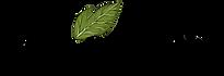 Fourmis.bio_elevage-fourmis