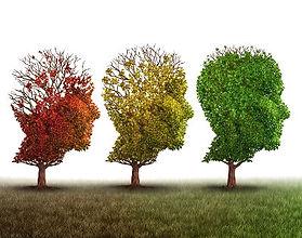 psychotherapie_psychologie_espace ressou