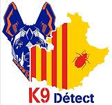 K9Detect-punaises-de-lit_detection-canine