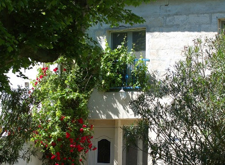 Location Gîte rural proche de Saintes Maries de la Mer