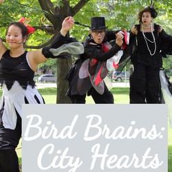 Bird%20Brains%20and%20City%20Hearts%202_
