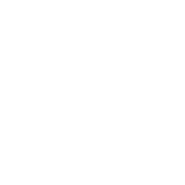Emergency, Public Service Camera Systems