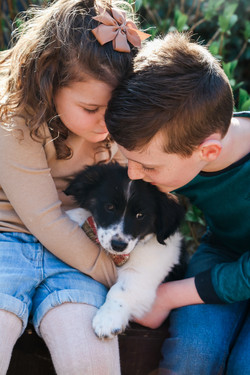 Children & pet session