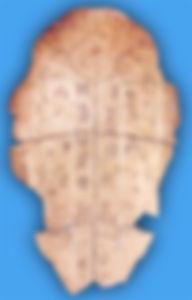 SHELL SCRIPT 2.jpg