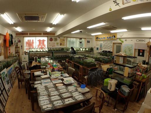 生きもので人々をつなげる ~NPO法人 北九州・魚部~