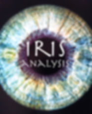 Iris Analysis Werbefoto.jpg