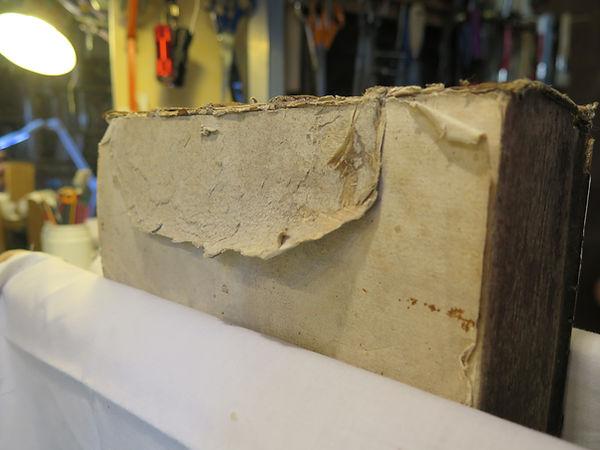 Bible de Mérian avant restauration